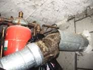 Dead Raccoon inside oil furnace flue
